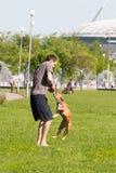 Sankt-Petereburg, Russland - 15. Mai 2016: der Mann spielt im Park mit einem Hund Lizenzfreie Stockfotografie