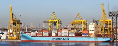 Sankt-Petersburg/Rusland: - Juni 03 2019: De Containerschip van de Maersklijn in haven in sankt-Petersburg Pijler met kranen royalty-vrije stock fotografie