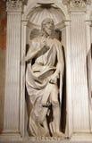Sanktt John The Baptist Royaltyfri Bild