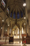Sanktt Patricks domkyrka Royaltyfria Bilder