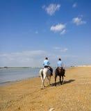 SANLUCAR DE BARRAMEDA, ESPANHA - 12 de abril de 2015 - cavalos de equitação sobre Imagem de Stock