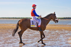 Sanlucar races Royalty Free Stock Photography