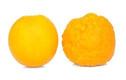 Sano ed ammalato arancioni. Fotografie Stock