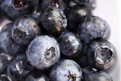 Sano fresco in pieno dei mirtilli delle bacche delle vitamine Fotografie Stock