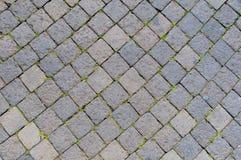 Sanpietrini, pavimento típico de Roma, Itália Fotos de Stock Royalty Free