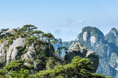 Sanqingshan mountain scenery Royalty Free Stock Images