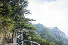 Sanqingshan mountain scenery Stock Image