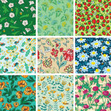 Sans couture floral Photos stock