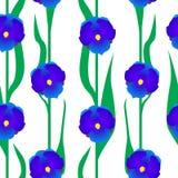 Sans couture floral avec les fleurs bleues Photo libre de droits
