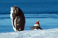 Sans tête à Noël Images libres de droits