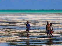 Sansibar-Einheimische, die heraus bei Ebbe zum Meer gehen Lizenzfreie Stockfotos