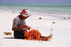 Sansibar-Strand Lizenzfreie Stockbilder