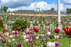 Sanssouci palace and park in spring, Potsdam, Germany royalty free stock photography
