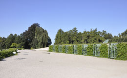 Sanssouci Palace and vineyard in Potsdam,Germany royalty free stock photography