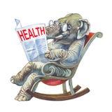 Santé Photos libres de droits