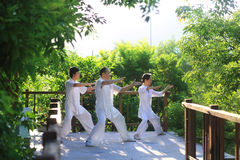 Santé de chi de la Chine tai des arts martiaux Images libres de droits