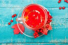 Santé de thé avec le viburnum photographie stock