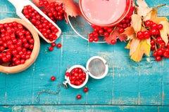 Santé de thé avec le viburnum image libre de droits