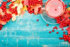 Santé de thé avec le viburnum photo libre de droits