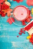 Santé de thé avec le viburnum photographie stock libre de droits