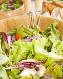 Santé de végétarien de salade image libre de droits