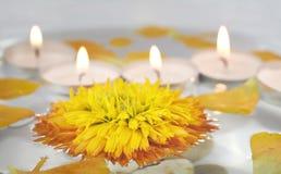 Santé et station thermale : fleurs, cailloux, l'eau Image stock