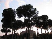sant-angelo-castle-seen-behind-pine-trees Royalty Free Stock Photos