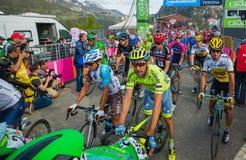 Sant Anna, Włochy Maj 28, 2016; Gorup Fachowi cykliści wyczerpujący przechodzi metę po tym jak ciężka halna scena Zdjęcia Stock