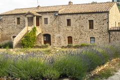 Sant'Antimo - Ancient house with lavender Stock Images