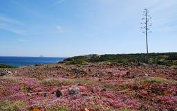 Sant'Antioco, Σαρδηνία Στοκ εικόνες με δικαίωμα ελεύθερης χρήσης
