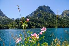 sant jeziorny maurici Zdjęcia Stock