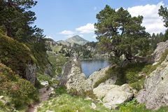Sant Maurici自然公园  图库摄影