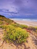 Sant Tomas Beach on Minorca Royalty Free Stock Image