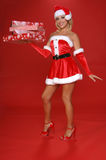 santa αρωγών s Χριστουγέννων Στοκ εικόνες με δικαίωμα ελεύθερης χρήσης