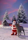 Santa και πρόβατα Στοκ Εικόνα
