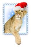 santa λιονταριών καπέλων Claus Στοκ φωτογραφία με δικαίωμα ελεύθερης χρήσης