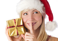 Santa Royalty Free Stock Photos