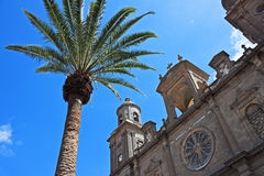 Santa Ana Cathedral with palm. Santa Ana Cathedral with signature Canary Island palm tree, Las Palmas, Gran Canaria, Spain royalty free stock photos