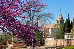 Free Santa Ana Church, Alhambra Palace. Royalty Free Stock Images - 64968469
