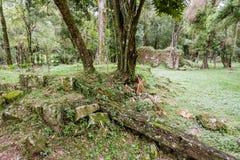 Santa Ana Jesuit Mission Argentina Stock Photography