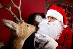Free Santa And Rudolf Royalty Free Stock Photography - 77307387