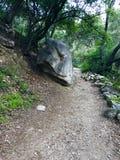Santa Anita Canyon Hiking Trail royaltyfri fotografi