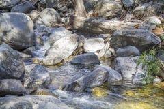 Santa Anita-het water van het kreekkristal Stock Fotografie