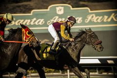 Santa Anita Horse Racing Track stock afbeeldingen