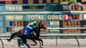Santa Anita Park Horse Racing stock afbeeldingen