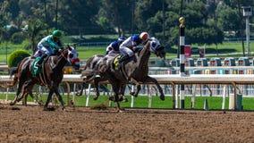 Santa Anita Park Horse Racing arkivfoto