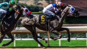 Santa Anita Park Horse Racing image stock
