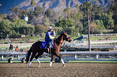 Santa Anita Racetack Stock Images