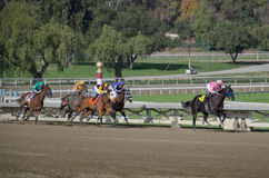 Santa Anita Racetack Stock Image