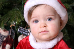 Santa Baby #2. Santa Baby in front of tree Royalty Free Stock Image